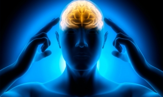 neurology-2-mncbo0nj9uccmvywhulermmek4axxeci9zrcdq62j4[1]